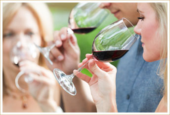 West Virginia Wine Tour Vacation Packages
