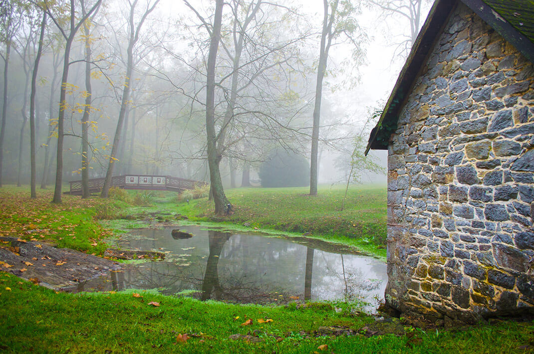 Pond and mist on property