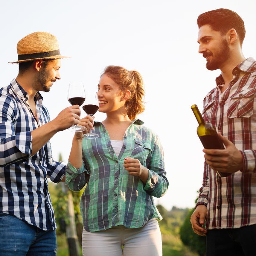 Northern VA wineries tour