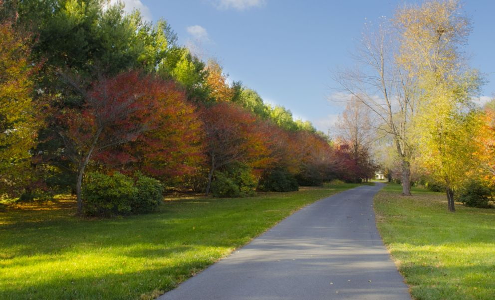 Fall Scenic Drive in West Virginia